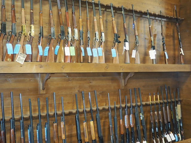 Huron Valley Guns - Rifles